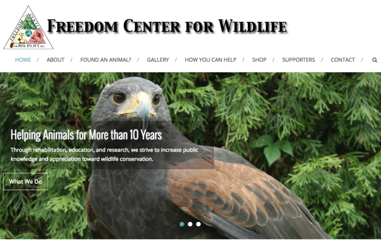 NJ Wildlife Rehab
